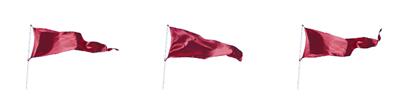 Fischer Financial - Red Flags